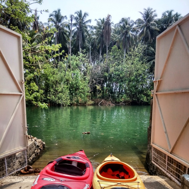 Red and Yellow kayaks waiting to enter the green water surrounded by coconut trees.