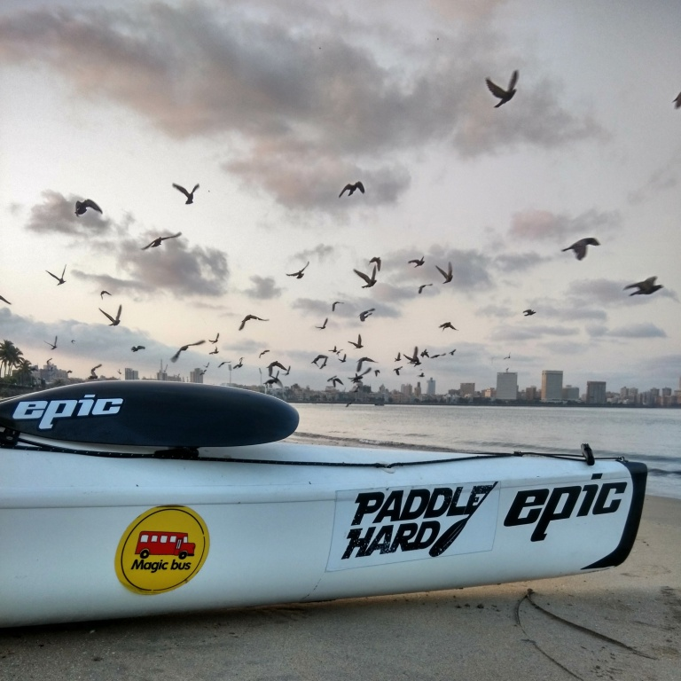 Kayak by Marine Drive with birds flying overhead.